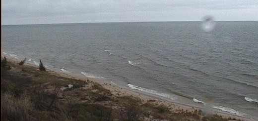 A strong north wind will bring chilly temperatures and rough seas today.